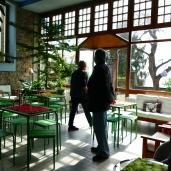 Bollengo - Casa Magnolia
