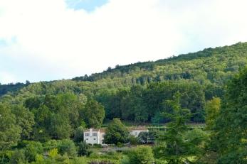 Bollengo - Casa Magnolia - azienda agricola Orosia
